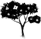 Arbusto floreciente de Grunge ilustración del vector