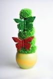 Arbusto imperecedero Foto de archivo libre de regalías
