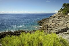 Arbusto y rocas verdes cerca del mar en la isla del dominó de San Apulia Italia imagen de archivo