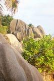 Arbusto y rocas verdes, Seychelles Fotos de archivo