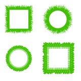 Arbustos de la hierba libre illustration