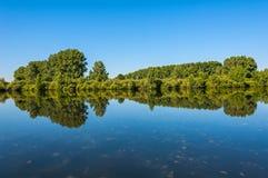 Arbustos de los árboles de la reflexión del lago Fotos de archivo libres de regalías