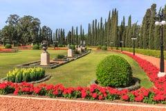 Arbustos decorativos aparados e flores dadas forma plantadas Fotos de Stock