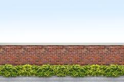 Arbustos e cerca do tijolo Imagens de Stock