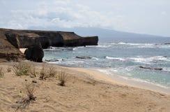 Arbustos por la playa cerca de la península Fotografía de archivo