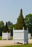 Arbustos Potted en el parque fotografía de archivo