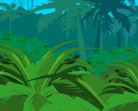 Arbustos tropicales contra selva Fotografía de archivo libre de regalías