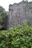 Arbustos verdes en el fondo de la pared de la fortaleza Fortaleza vieja Budva, arquitectura de la ciudad de Montenegro foto de archivo libre de regalías