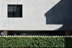 Arbustos y cerca del metal blanco en fondo azul del hormigón de la pared Fotografía de archivo
