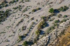 Arbustos y crecimiento del desierto Imágenes de archivo libres de regalías