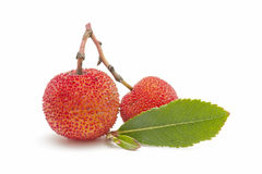 Arbutus fruit. Natural arbutus isolated on white background Stock Images