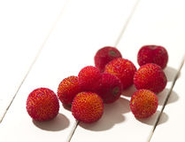 Arbutus fruit. Red arbutus fruit over a white table just collected Royalty Free Stock Photos