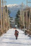 Arbutus Greenway in Winter Royalty Free Stock Image