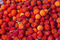 Arbutus unedo fruits on a market in Morocco Stock Photography