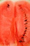 arbuz Obrazy Stock