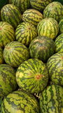arbuz Owoc i warzywo sklep arbuzy Fotografia Stock