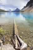 Arc de lac Images libres de droits