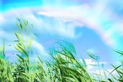 Arc-en-ciel Photographie stock