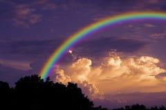 Arc-en-ciel au-dessus d'arbre sec de branche de silhouette de dos de ciel de coucher du soleil Photos libres de droits