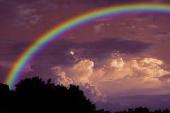Arc-en-ciel au-dessus d'arbre sec de branche de silhouette de dos de ciel de coucher du soleil Image libre de droits