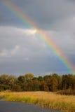 Arc-en-ciel au-dessus de forêt d'automne Photographie stock libre de droits