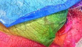 Arc-en-ciel congelé Rose Images libres de droits