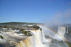 Arc-en-ciel de cascades d'Iguazu sur ensoleillé images stock