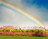 Arc-en-ciel et fleurs Photos stock