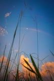 Arc-en-ciel et lune Image libre de droits