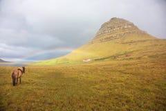Arc-en-ciel et poney aux chutes de Kirkjufell Photo stock