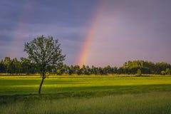 Arc-en-ciel en Pologne Images libres de droits