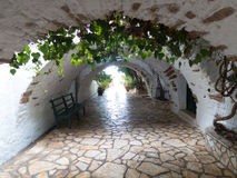 Arc pavement walkway with green plants growing above. Light at the end Stock Image
