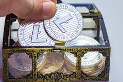 Arca do tesouro de Litecoin imagens de stock
