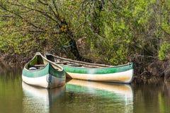 Arcachon Baai, Frankrijk Kano's op de rivier Leyre, ook genoemd Klein Amazoni royalty-vrije stock foto