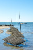 Arcachon Bay, France, oyster bed. Oyster bed at low tide Royalty Free Stock Photography