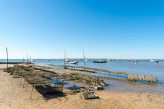 Arcachon Bay, France, oyster bed. Oyster bed at low tide in front of the dune of Pyla or dune of Pilat Royalty Free Stock Image