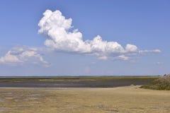 Arcachon Bay at low tide Royalty Free Stock Photo