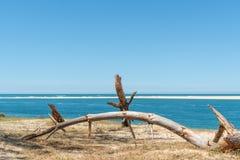 Arcachon fj?rd, Frankrike: stranden Petit Nice framme av sandbanken av Arguin och n?stan dyn av Pilat arkivbild