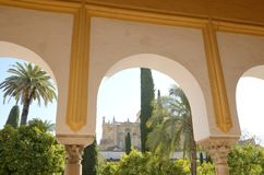 Arcade in patio of the mosque. Sight of the mosque form arcade in courtyard of oranges trees, Cordoba, Andalusia, Spain Stock Photos