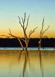 Arcadia Lake at Sunrise Royalty Free Stock Photo