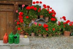 Arcadisch tuin Royalty-vrije Stock Afbeelding