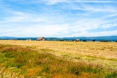 Arcata botten Hay Field arkivbild