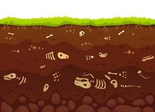 Archäologieknochen in den Bodenschichten Begrabene versteinerte Tiere, skeleton Knochen des Dinosauriers im Schmutz und Untertage lizenzfreie abbildung