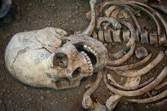 Archäologische Aushöhlungen eines alten menschlichen Skeletts und des menschlichen Schädels Stockbild