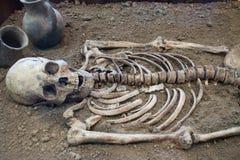 Archäologische Aushöhlungen eines alten menschlichen Skeletts und des menschlichen Schädels stockbilder