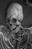 Archäologische Aushöhlungen eines alten menschlichen Skeletts und des menschlichen Schädels Lizenzfreie Stockbilder