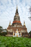 Archäologische Fundstätte am Tempel Ayutthaya Stockbilder