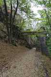 Arch above the dirt path. Arch constructed above the dirt path in the mountain with trees Royalty Free Stock Images