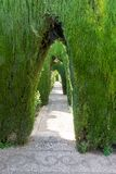 An arch at the Alhambra gardens in Granada, Spain, Europe. On a bright summer day Royalty Free Stock Photo