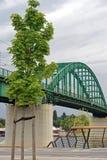 Arch bridge. Green steel arch bridge in Belgrade Stock Photo